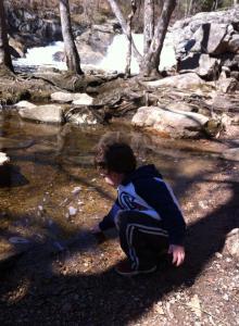 Bray at falls